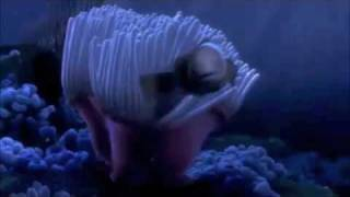 getlinkyoutube.com-Finding Nemo - Nemo Egg Scene