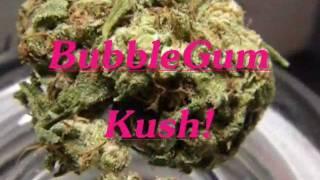 getlinkyoutube.com-Mr.Davis Marijuana Strain- BubbleGum Kush!