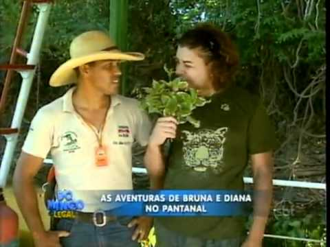 Domingo Legal - David, Bruna e Diana no Pantanal - Parte 1
