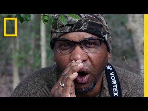 Bird-Watching While Black: A Wildlife Ecologist Shares His Tips   Short Film Showcase