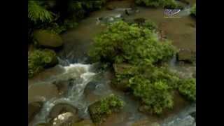 "getlinkyoutube.com-RTM RENTAS 4x4 ""Cabaran Borneo Safari Ke Imbak Canyon"""