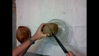 How to Open a Brown Coconut