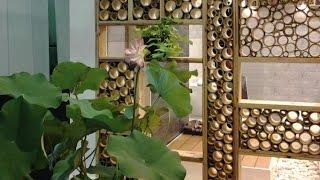 getlinkyoutube.com-Bamboo decoration ideas