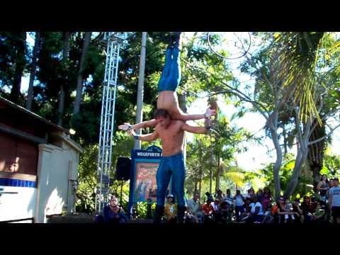 Wild Male Acrobats 2010