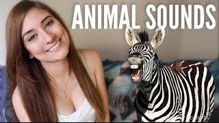 ANIMAL IMPRESSIONS