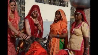 Amazing but true Donkey worship on Shitala  Astmi in Rajasthan,India