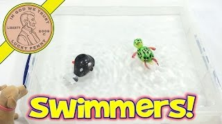 getlinkyoutube.com-California Creations Z Windups Swimmers - Wilber The Whale and Topaz The - Wind Up ToysTurtle
