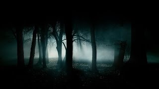 getlinkyoutube.com-FOREST AT NIGHT ✦ Crickets Owls Rain Wind in Trees ✦ Nature Sounds To Relax Study Sleep  🎧 TV RELAX