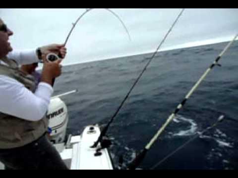Pesca em alto mar - Dourado 14 kg