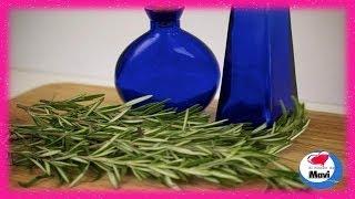 getlinkyoutube.com-Como hacer champu de romero para prevenir la caspa y la caida del cabello