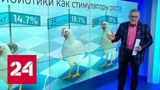 Наггетсы с сюрпризом. Крупная сеть фаст-фуда заказала курятину с антибиотиками