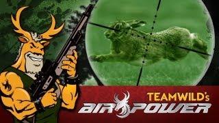 getlinkyoutube.com-Airgun Hunting: Rabbits in Texas with the Benjamin Marauder and NiteSite NS200