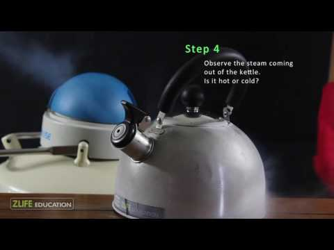 Liquid Nitrogen Cold Steam Generator in Kettle : Science for Kids
