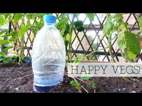 Riego automático ecológico Ecological automatic watering
