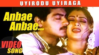 Anbe Anbe Video Song | Uyirodu Uyiraga Tamil Movie Songs | Ajith | Richa Ahuja | Vidyasagar