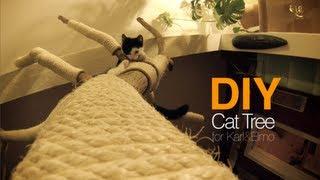 getlinkyoutube.com-DIY Cat Tree | Cattree | Kratzbaum | D.I.Y. | Karl & Elmo