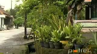 getlinkyoutube.com-Melongok Warga 'Desa Jamu' yang Sejahtera di Sukoharjo, Jawa Tengah 29 April 2013]   YouTube