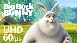 getlinkyoutube.com-Big Buck Bunny 60fps 4K - Official Blender Foundation Short Film