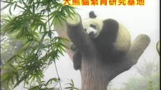 getlinkyoutube.com-[八大巨星] 龙头大队贺新年 -- 大胜年  九寨沟的春天 (Official MV)