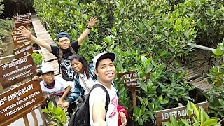 getlinkyoutube.com-JALAN-JALAN KE HUTAN MANGROVE PIK JAKARTA