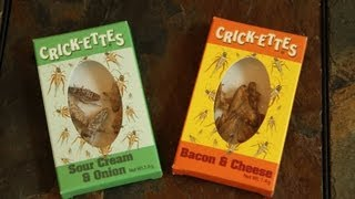 The Cricket-Eating Challenge | Brooklyn and Bailey