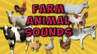 getlinkyoutube.com-Farm Animal Sounds