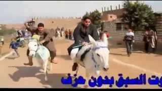 getlinkyoutube.com-اول مارثون لسباق الحمير فى مصر // هتموت من الضحك  Donkey marathon in Egypt