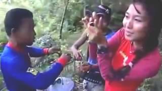 cara menangkap burung cucak hijau di hutan liar