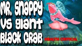 getlinkyoutube.com-Hungry Shark Evolution - Mr. Snappy vs Giant Black Crab