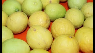getlinkyoutube.com-طريقة عمل الليمون المخلل مع الزيتون و الفلفل : الحاجة أم عبد الله