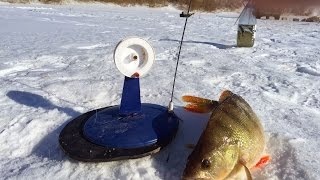 getlinkyoutube.com-Мечта рыбака. Зимняя рыбалка на Торгае.