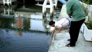 getlinkyoutube.com-ตกปลากับ โจ้ เจ้าพระยา ตอน สวายคลองคะนองศึก