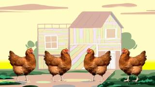 "getlinkyoutube.com-Animal Songs: ""Chicken Bop,"" by StoryBots"