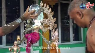 சூரிச் அருள்மிகு சிவன் கோவில் திருவெம்பாவை ஆருத்திரா தரிசனம் 02.01.2018