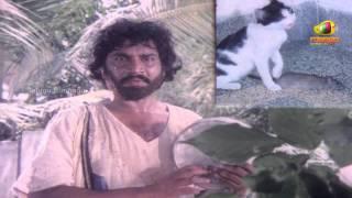 Chattaniki Kallu Levu Movie Songs - Chattaniki Kallu Levu Song - Chiranjeevi, Madhavi, Lakshmi width=