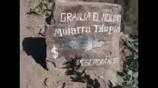 getlinkyoutube.com-La Lagunita Granja de peces Jimenez del Teul Zacatecas