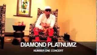 DIAMOND PLATUNMZ LIVE ON STAGE BRUSSELS ( SAT 21 JUNE 2014 ) width=