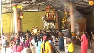 Chunnaka Kathiramalai Sivan Ammanvasal 7th Thiruvizha
