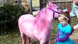 getlinkyoutube.com-Pink Pony Surprise for Rosie Dale's 5th Happy Birthday Party Bronies UPDATE