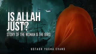 Is Allah Just? - Story Of The Woman & The Bird