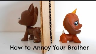 getlinkyoutube.com-LPS: How to Annoy Your Brother