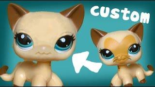 getlinkyoutube.com-Removing Paint for Custom LPS Short haired Cat| AliceLPS