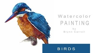 getlinkyoutube.com-How to Paint Realistic Birds with Watercolors