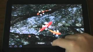 Koi Free Live Wallpaper - Android Apps on Google Play.flv view on youtube.com tube online.