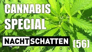 Cannabis Special: Mary Jane & Co.   Nachtschatten Television (56)