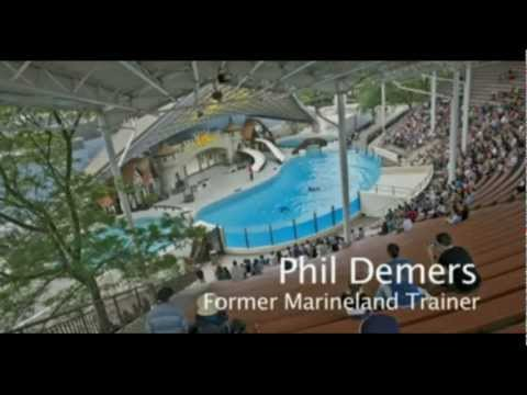 Behind the Scenes at Marineland