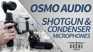 getlinkyoutube.com-DJI OSMO: Audio Test: Shotgun & Condenser Microphones: Rode, Sennheiser, Sony, Movo