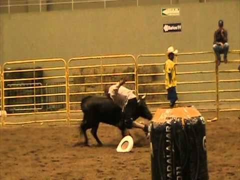 Payasos peleadores de toros. Campeonato Nacional de Rodeo FMR 2011. www.caballo.tv