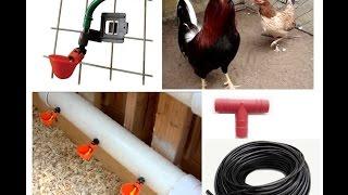 getlinkyoutube.com-Bebederos automáticos para aves tipo charola con clip.