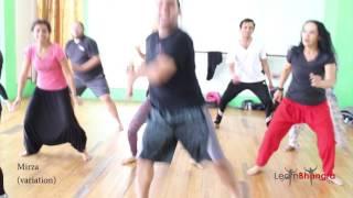 Imran Khan - Amplifier (DJ Fresh mix) | Bhangra Dance Steps & Tutorials | Learn Bhangra